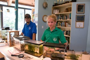 Volunteers enjoy the dynamic environment at Hidden Pond Nature Center.