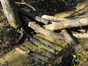 Fallen logs are used to create a stream blockage to slow the flow of water and prevent stream bank erosion.