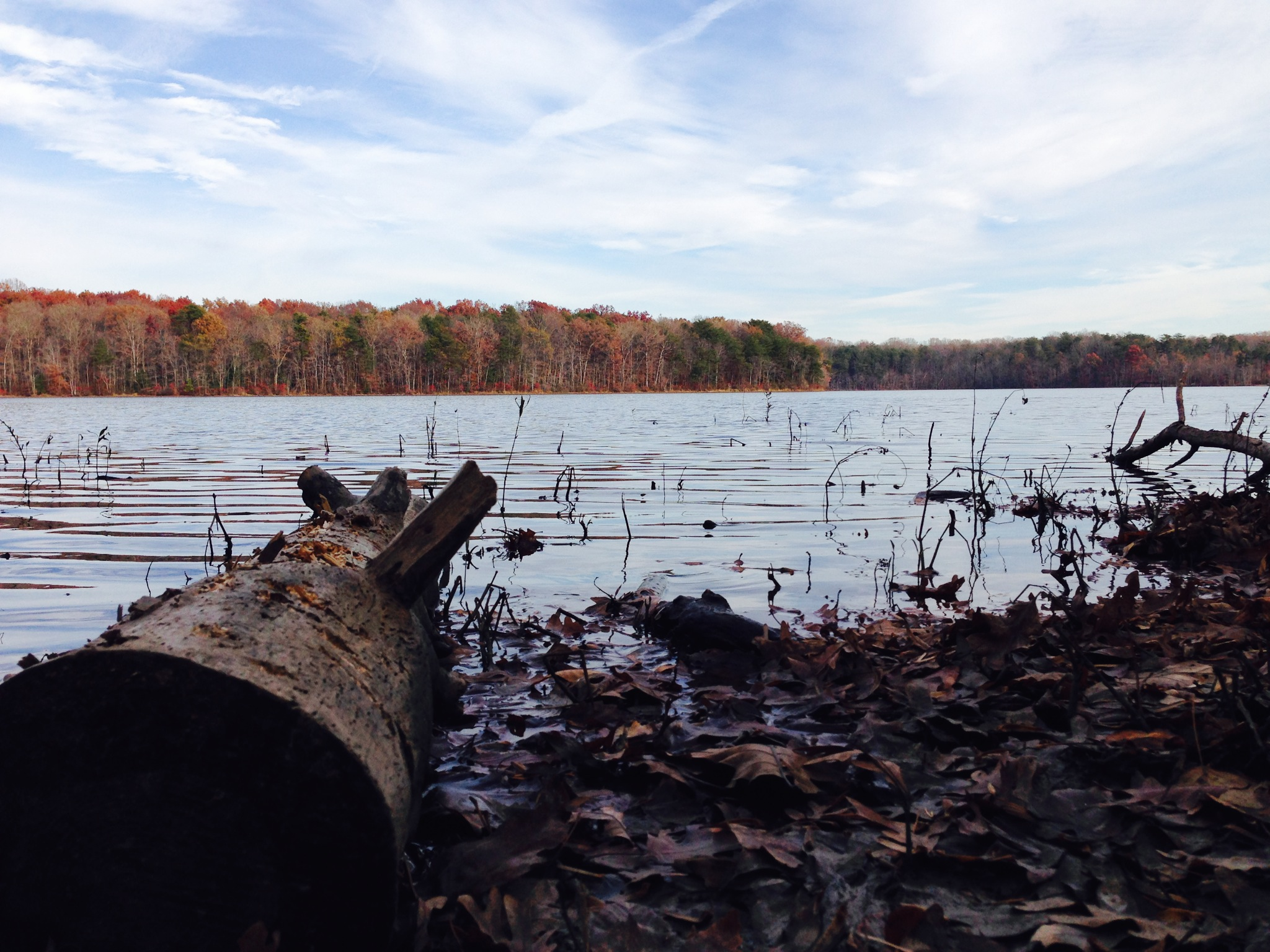 Our stories and perspectives articles of interest from for Burke lake fishing