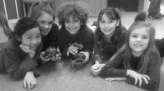 Girl Scouts with Riverbend's box turtles