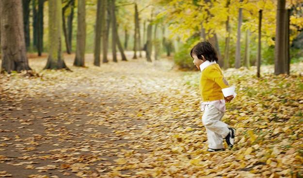 fall-yellowshirt