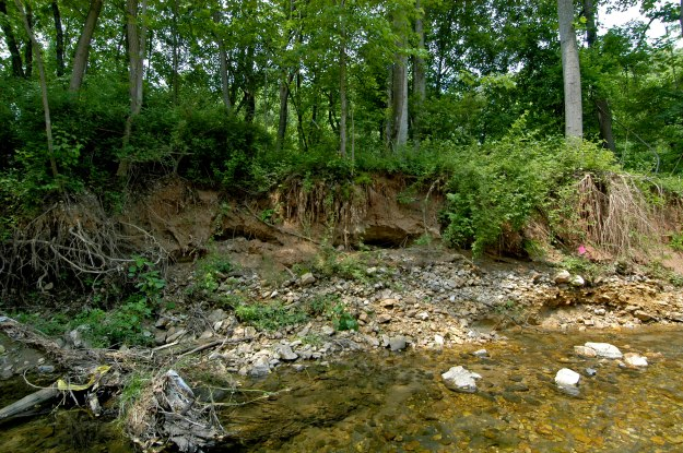 Erosion in a stream valley