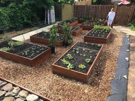 GS Master Gardeners 1