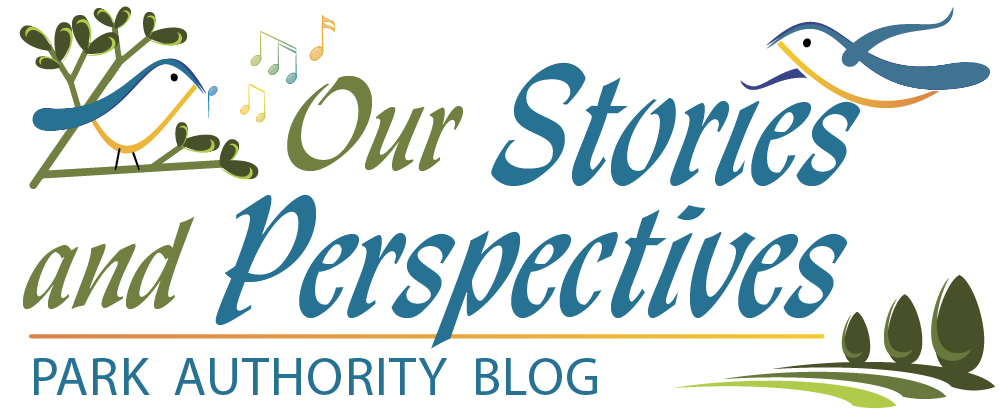 Our Stories and Perspectives Park Authority Blog