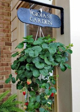 Garden a4
