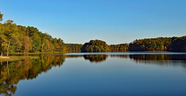 Burke Lake Fall