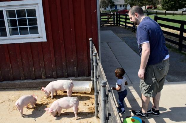 baby-animals-0413_0052-e1554297797603.jpg