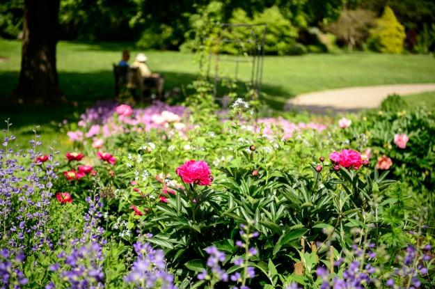 Green Spring_190510_0058