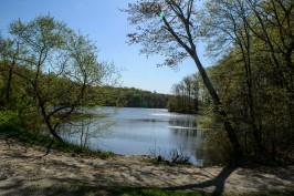 Burke Lake_042415_0008